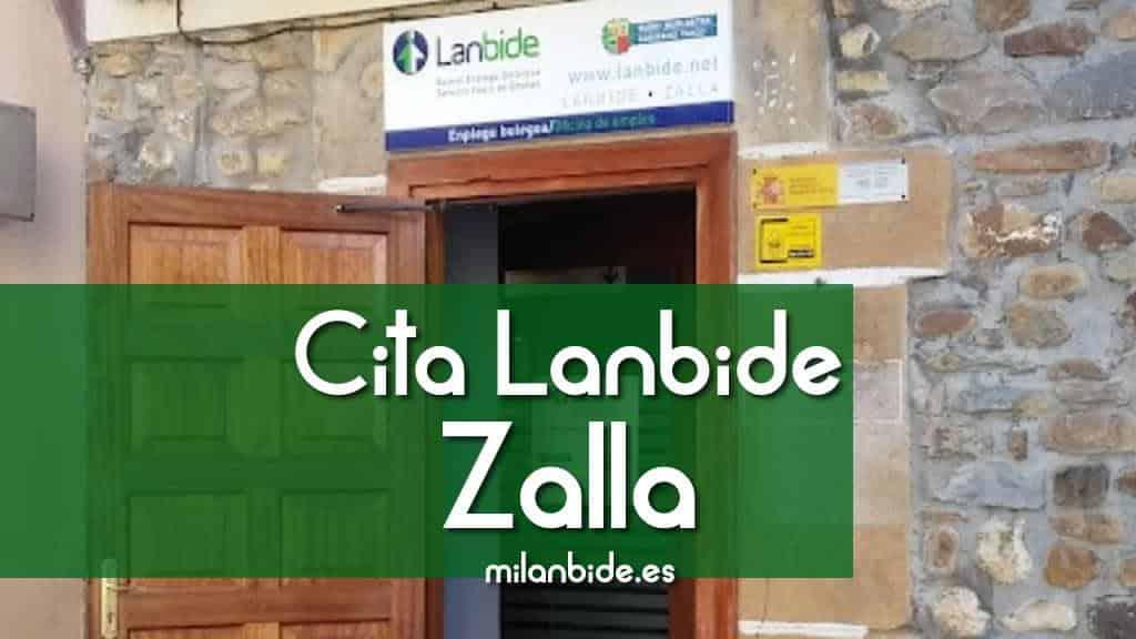 Cita Lanbide Zalla